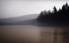 natura, nebbia, lago, mattina, foresta, Hills, alberi, ormeggio, molo