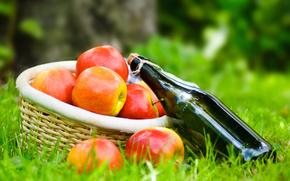 erba, cestino, tovagliolo, vino, bottiglia, picnic, mele