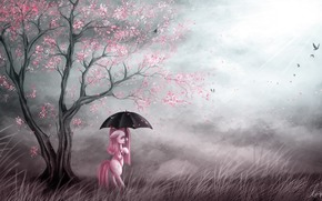 umbrella, Birds, pony, Art