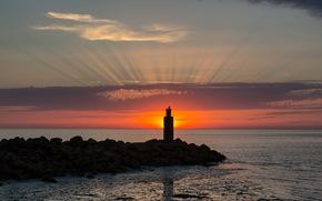 sea, sunset, bird, landscape