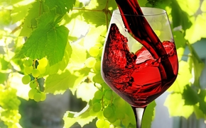 wine, red, poured, goblet, leaves, grapes