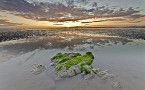 море, закат, камень, поросль, мель, водоросли, облака, отражение