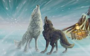 Art, Wolves, Winter, snow, box, lantern, blizzard, howl
