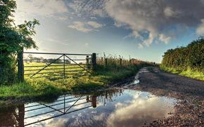 フィールド, 夏, フェンス, 道路, 水たまり, 自然