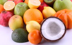 fruit, oranges, apples, avocado, mandarin, lemons, Grenades, kiwi, coconut