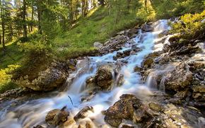 река, лес, лето, природа