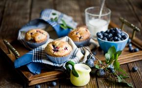 cibo, Cupcakes, mirtilli, Bacche, vassoio, Panni, piatti, natura morta