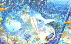 Arte, ragazza, pesce, delfino, sott'acqua, bolle