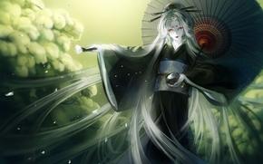 Art, girl, umbrella, kimono, brush, piala, white hair, shrubs