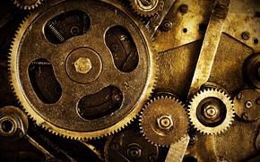 mechanism, gear, Nuts
