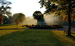 autunno, parco, fogliame, aiuola, fogliame, alberi, erba, albero, alba, sole, raggi, bicicletta