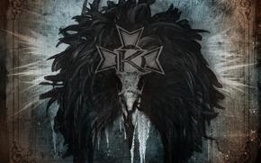 kamelot, metal, silverthorn, raven, beak, logo
