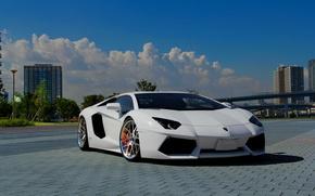 Lamborghini, Aventador, LP700-4, bianco, Cielo, nuvole, Lamborghini, Aventador, bianco, vista frontale, cielo, nuvole, auto, macchinario, Auto