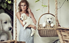 девушка, блондинка, платье, собаки, щенки, белые, корзины