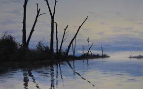 Art, nature, lake, Trees, trunks, stick, naked, reflection, twilight