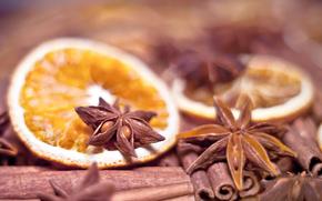 wallpaper, cinnamon, Sticks, orange, food, anise, Spices