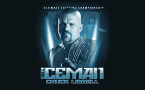 fighter, Mixed Martial Arts, legend, championship belt