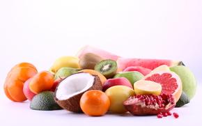fruit, coconut, garnet, tangerines, kiwi, apples, grapefruit, lemon, avocado