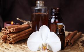 цветок, орхидея, корица, свеча, бутылочки, масло