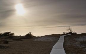 поле, скамья, дорога, пейзаж
