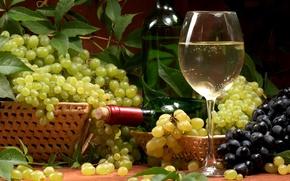 vino, bianco, Cesti, uva, bottiglia, bicchiere da vino, fogliame