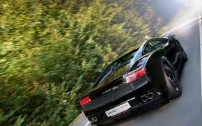 Lamborghini, Gallardo, back view, road, motion, forest, Trees