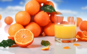 juice, orange, fruit, oranges, citrus, glass, leaflets, peel