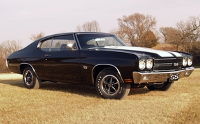 Chevrolet, shevil, hardtop, compartment, Black, front, muscle car, grass, Trees, sky, Chevrolet