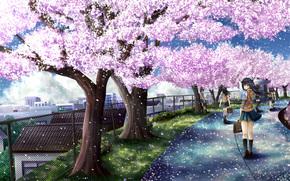 арт, сакура, деревья, цветы, школьники, девушка, дорога, забор, город