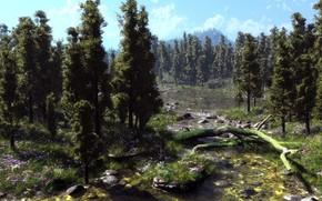 Arte, natura, alberi, fiori, fiume, log, albero caduto, muschio, pietre