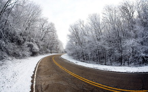 road, Winter, Trees, landscape
