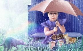lluvia, paraguas, nia, Animales, Los gatitos, perro, hierba, imagen