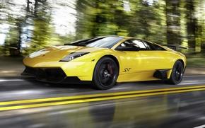 арт, машина, дорога, скорость, деревья, размытость, Lamborghini