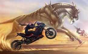 Kunst, Rennen, Monster, Fahrrad, Motorrad, Jungs, Wste, Sand, Katze, Raubtier, Flgel, Waffe, Spikes, Wettbewerb
