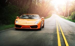 Lamborghini, Gallardo, arancione, strada, disposizione, velocit, Lamborghini