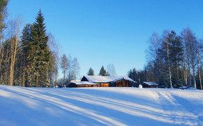 paesaggi, inverno, neve, alberi, Abete, Alberi, pino, casa, villaggio, riposo, mattina, sole, ombra, strada