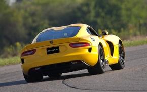 Dodge, Viper, Supercar, back view, speedway, background, Dodge