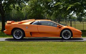 вид сбоку, оранжевая, ламбо, диабло, деревья, Lamborghini