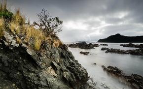 海, 岩石, 景观