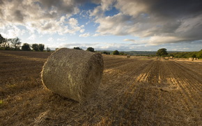 field, hay, sunset, landscape