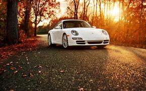 Porsche, Carrera, порше, каррера, машина, осень, листья, дорога, солнце, деревья, автомобили, машины, авто