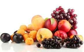 grapes, plums, apricots, peaches, nectarine, fruit, Berries