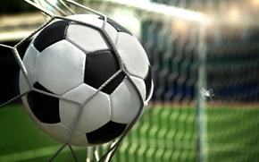 ball, gate, net, football, fuzz