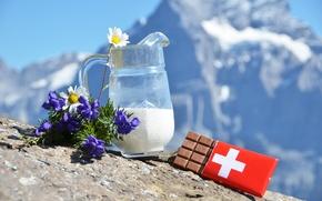 молоко, шоколад, швейцарский, цветы, ромашки, Альпы