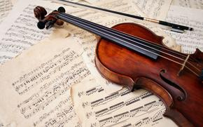 violin, musical instrument, bow, music, Sheets