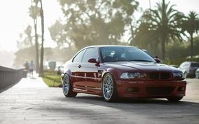 BMW, rojo, Palms, csped, personas, coches, Ajustes, BMW