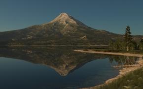 natur, munte, lac, suprafata neteda, reflecie, copac, uscat, iarb, verdea
