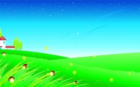 erba, Farfalle, alberi, Stella, casa, Fireflies