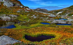 natura, Montagne, lago, stagno, acqua, impianto, pietre
