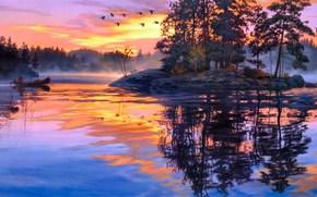 河, 上午, 黎明, 雾, 船, 岛, 森林, 湖, 鸭, 画